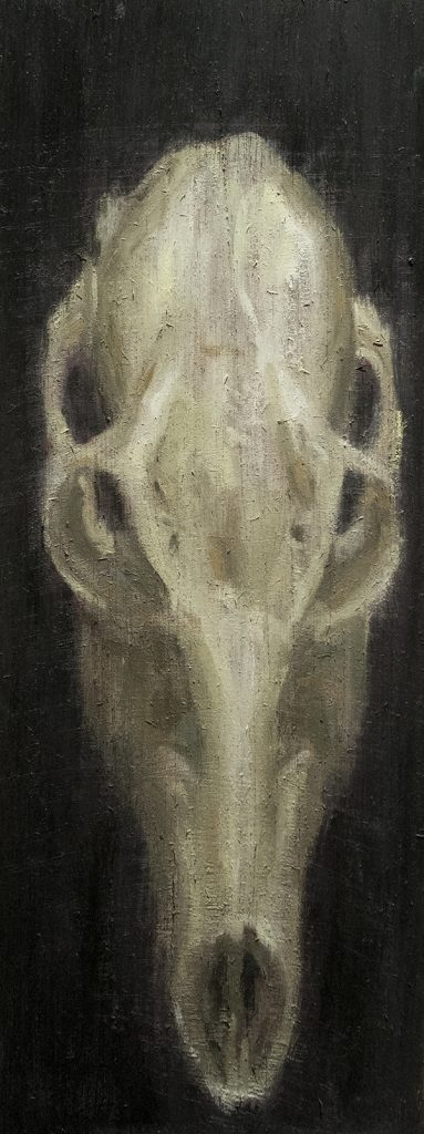 Deer Skull Study #2 / Oil on Wood / 13 x 35.5 cm / 2017